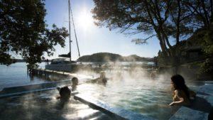 Pure Cruise Lake Rotoiti tour